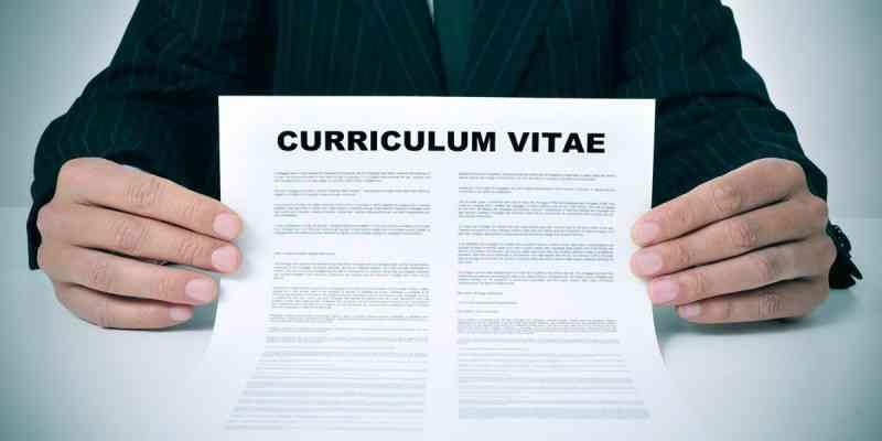 Partes del currículum vitae