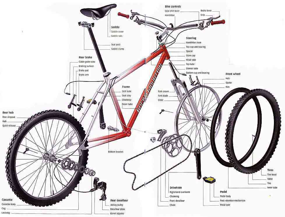 Bicycle Rear Hub Exploded View : Partes de la bicicleta
