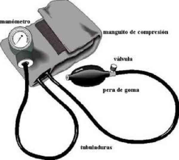 Hipertensión portal secretos revelados