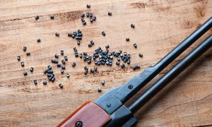 Partes de una pistola de Balines sometida a Desgaste