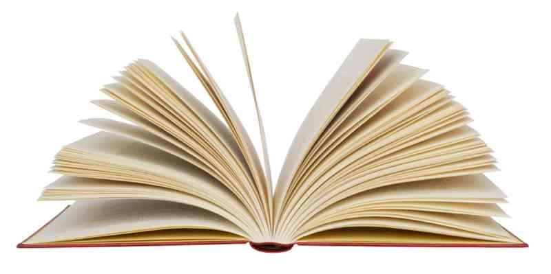 Partes Internas De Un Libro