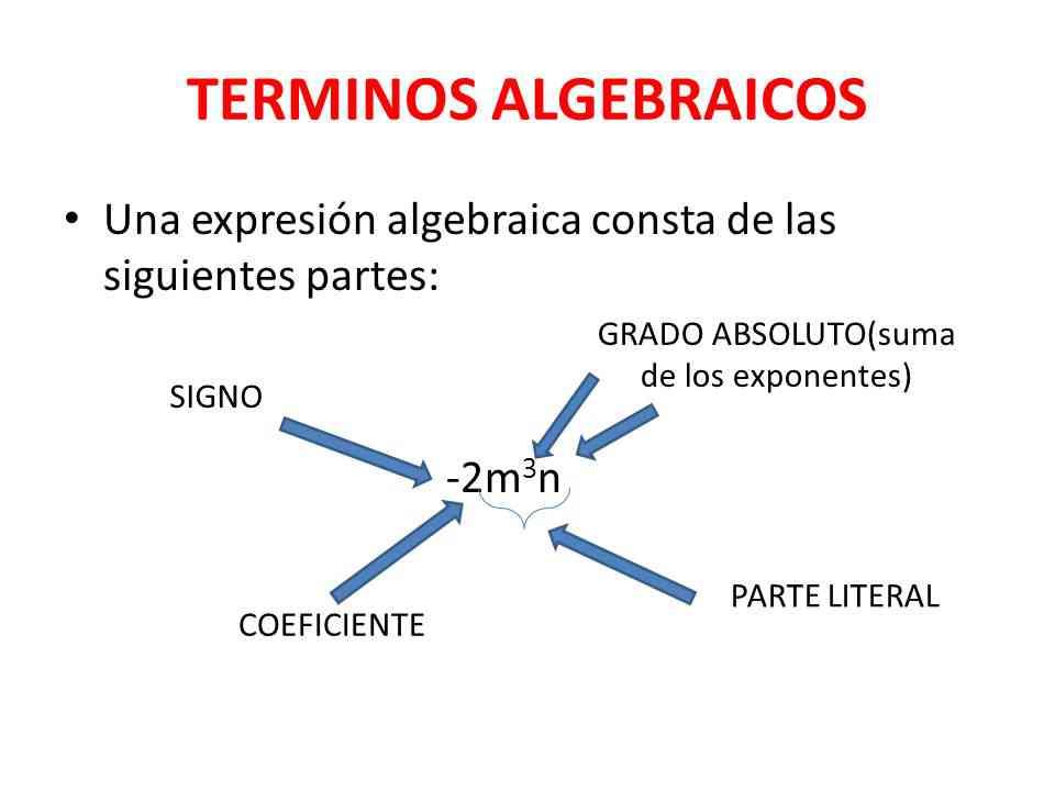 Partes De La Expresión Algebraica