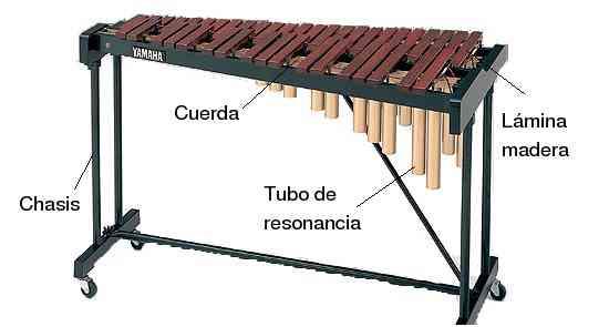 Partes del xilófono